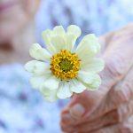 Criação de propósito e os benefícios para a longevidade
