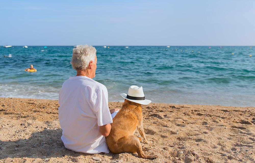 casa na praia investimento despesa 60 mais