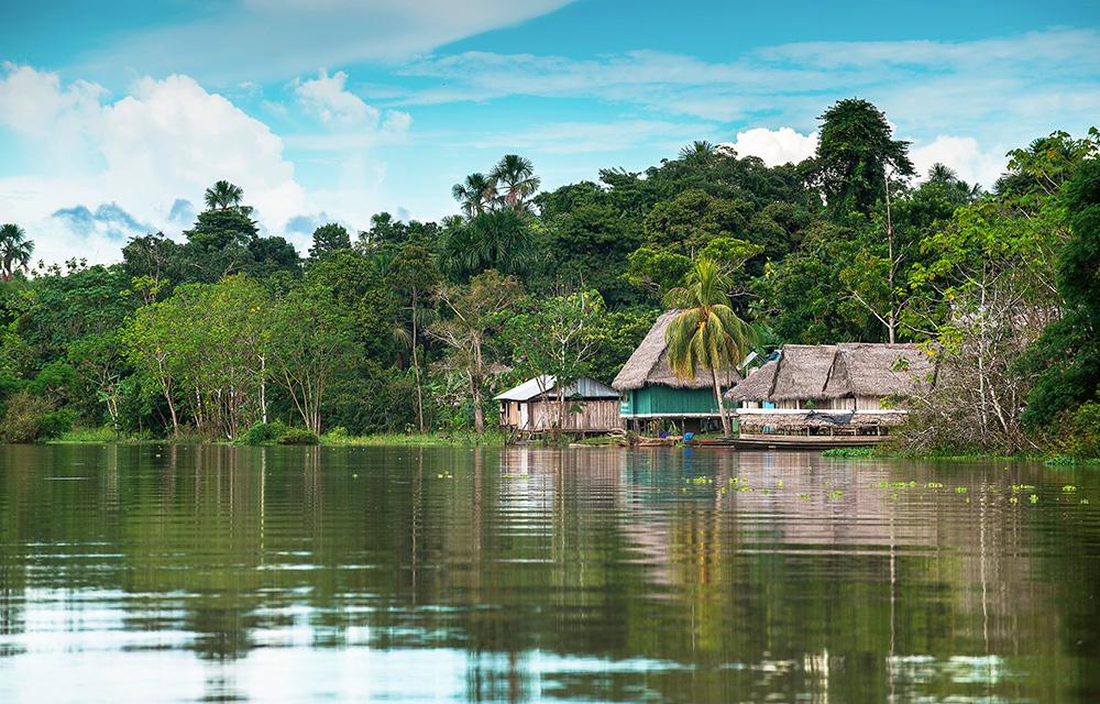 Conheça a beleza da floresta amazônica viajando em cruzeiros fluviais 60 mais