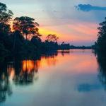 Cruzeiros fluviais: viagens de luxo e conforto no meio da floresta amazônica