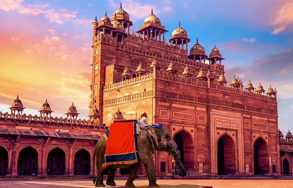 Viagem à Índia 60 mais