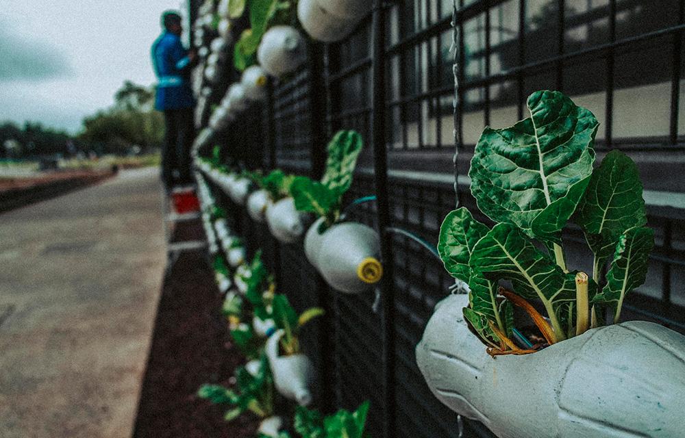 Dicas sustentáveis de reciclagem - 60 mais