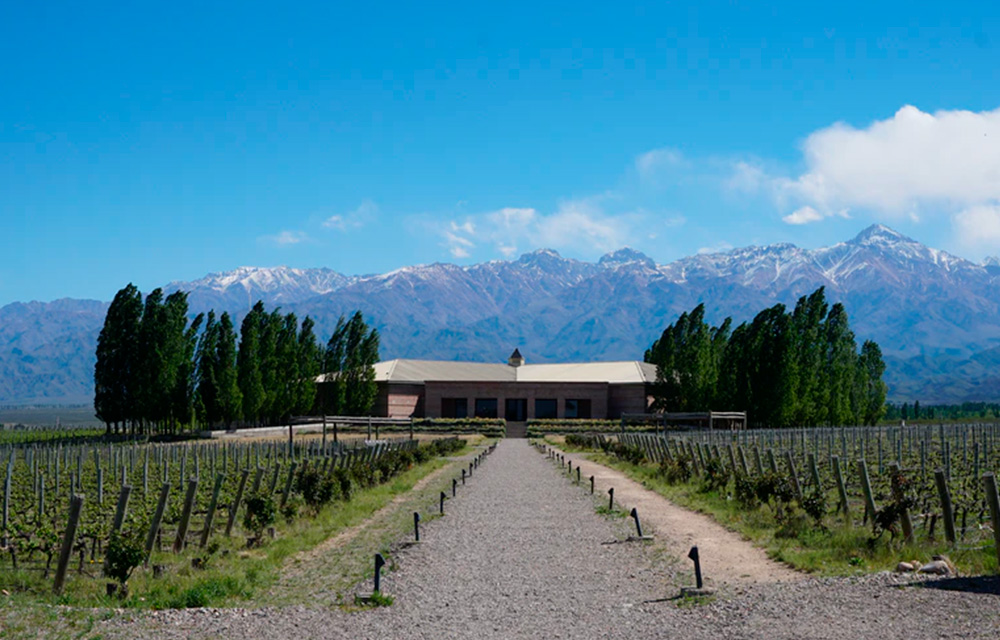 Vinhos sul-americanos Bodega Salentein Mendonza Argentina - 60 mais