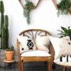 Plantas de inverno: como cuidar na estação mais fria do ano + dicas de décor